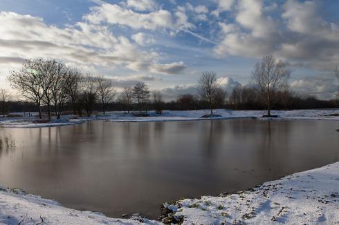 Eerste-sneeuw-op-de-kooi,-6-12-12-800x533-web