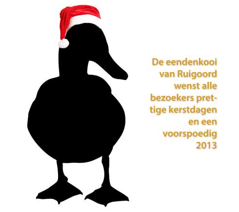 logo eendenkooi van Ruigoord RGB kerstmuts tekst