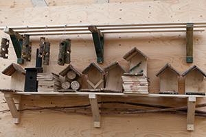 een-verzameling-stammetjes,-insectenhotels-en-nestkastjes