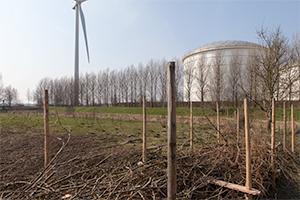 een-oude-boerenwei-vlakbij-de-silo's