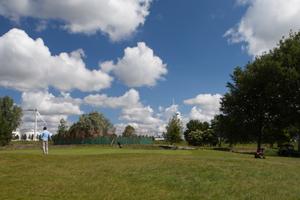 de-eendenkooi-vanaf-de-golfbaan-in-juni-2013