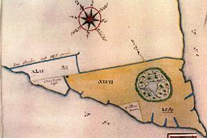 Drie-armige zeekrekenkooi Ruigoord