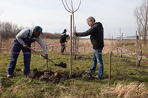Taquiero-en-Dick-planten-de-laatste-boom
