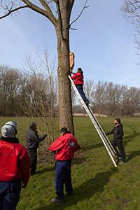 Ecoloog-Daan-zekert-de-ladder-voor-Justice