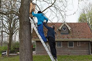 Ook-op-Ruigoord-Zuid-zijn-kasten-opgehangen
