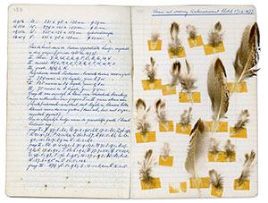 bladzijde-uit-een-van-de-dagboeken-van-jacob-walters